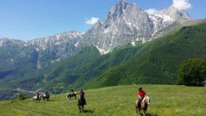 Gran Sasso Maneggio Team Horse