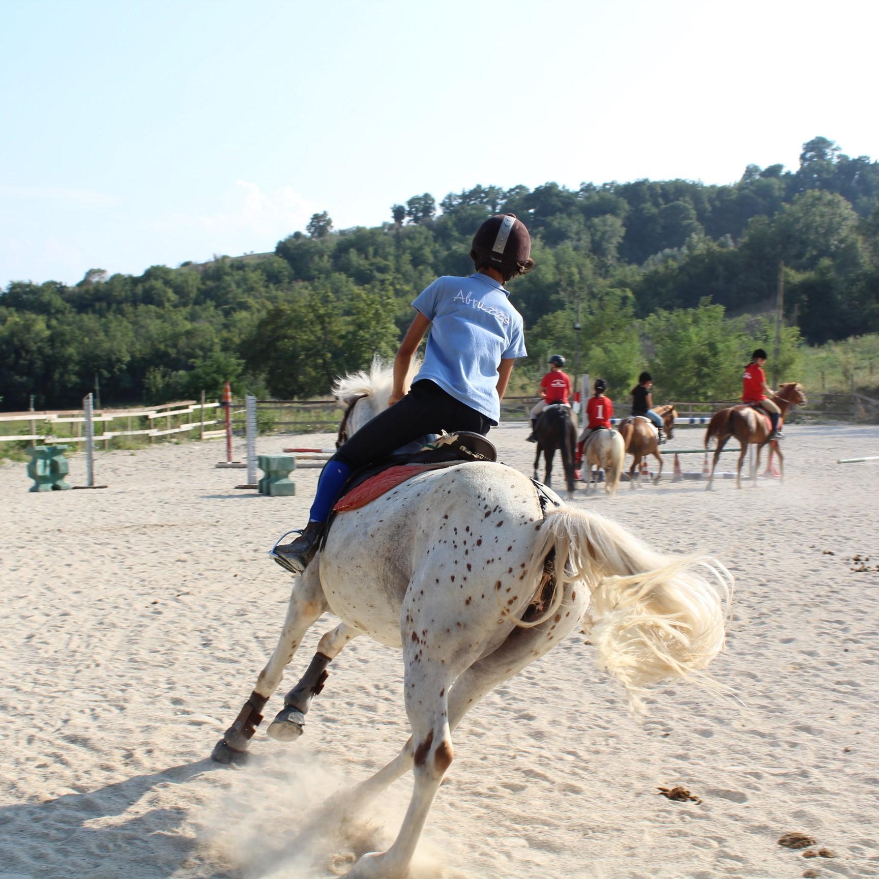 Lezioni Equitazione Maneggio Team Horse