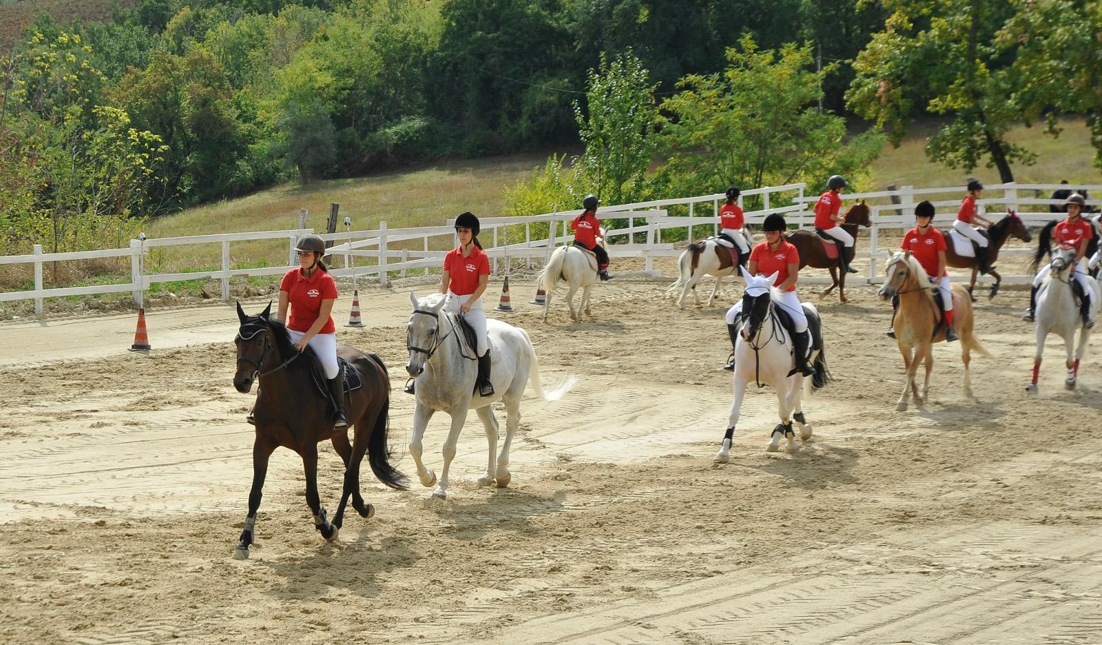 maneggio team horse squadra agonistica